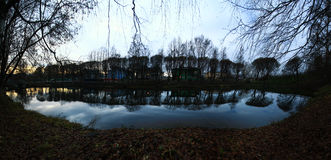 Trees shore of the pond autumn winter. Old Royalty Free Stock Photography