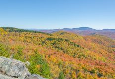 Trees Show Their True Colors Across A Mountainous Landscape. Trees display their true colors across a vast mountainous landscape deep in the Adirondacks Royalty Free Stock Photography