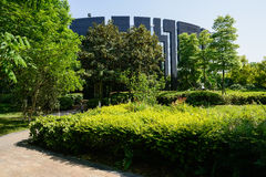 Trees and shrubs before modern building at sunny summer noon Stock Images
