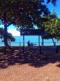 Trees sidewalk bench ocean. From a walk down Trinity beach in Australia QLD stock images