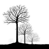 Trees Silhouette, Black White Vector. Vector trees silhouette, flowers and grass, black and white vectorial shape, fog at the background Royalty Free Stock Photography