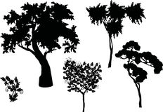 Trees silhouette set Stock Image