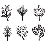 Trees silhouette set with branches for label, logo,tattoo Royalty Free Stock Photos