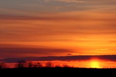 Winter sunset. Trees silhouette on sunset sky background royalty free stock photography