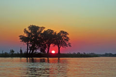 Trees Silhouetted against African Sunset Stock Photo