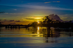 Trees Silhouetted Against An Orange Sky At Sunset Over Laguna Grande In The Cuyabeno Wildlife Reserve National Park, In Stock Photography
