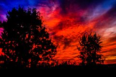Trees silhouetted in a brilliant red sunrise. Springbank, Alberta, Canada Stock Image