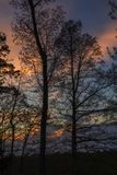 Trees Silhouetted, Sunset. Trees Silhouetted in a Colorful Evening Sky Stock Images