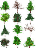 Trees silhouettes. A set of 12 trees silhouettes Royalty Free Stock Photos