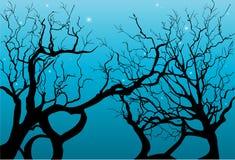Trees silhouettes Royalty Free Stock Photos