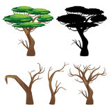 Trees with Silhouettes Royalty Free Stock Photos