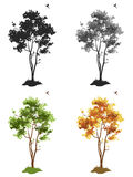 Trees. Silhouettes of deciduous trees for your design, white background, illustration stock illustration