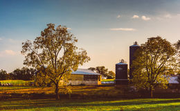 Trees and silos on a farm in rural Adams County, Pennsylvania. Stock Images