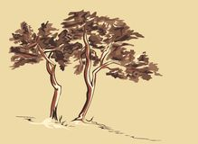 Trees Sketch Royalty Free Stock Image