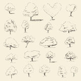 Trees sketch set, vintage vector style, hand drawn Royalty Free Stock Images