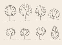 Trees sketch set, vintage vector style, hand drawn Stock Images