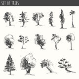 Trees sketch set, vintage vector style, hand drawn Stock Photos