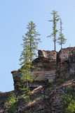 Trees, sky and cliffs Royalty Free Stock Images