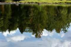 Trees and sky reflected in water Stock Photography