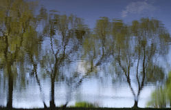 Trees and sky are reflected in the water. Spring landscape reflected in water royalty free stock image