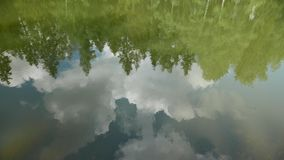 Trees and sky reflection in calm forest pond 4k. Pond in a beautiful park. Other camera movements, raw flat color, frame rates, formats, and resolutions are stock video