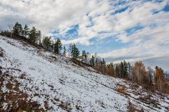 Trees slope mountains snow fall Royalty Free Stock Photo