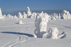 Trees in snow Stock Photo