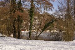 Trees, snow and ice-cold lake - Landscapes wintry - Front view Royalty Free Stock Photo