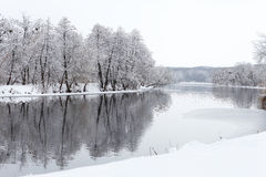 Trees in the snow and not yet frozen river Royalty Free Stock Photo