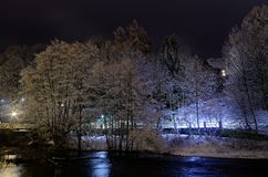 Trees in snow on a river bank at night. Bad Lauterberg, Germany. long exposure photography royalty free stock photography
