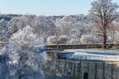 Trees snowy fortress stock photography