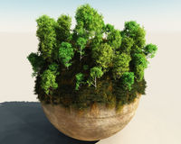 Trees on sphere. 3D generated image of trees on sphere Royalty Free Stock Photo
