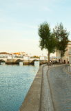Trees standing by Gilao river. Tavira cityscape from the right bank of the gilao river during a summer sunset. Vertical Royalty Free Stock Photos