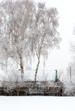 Among the trees stands a wooden house. A tree covered with frost. Among the trees stands a wooden house. Winter background Stock Photo
