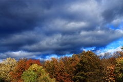 Trees and Storm Clouds Background Stock Photos