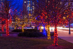 Trees on street decorated with christmas lights. Night shot of trees on street decorated with multicolor christmas lights garlands - illumination Royalty Free Stock Photos
