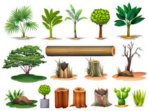 Trees and stumps. Illustration of the trees and stumps on a white background stock illustration