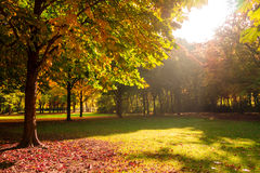 Autumn impressions Royalty Free Stock Photography
