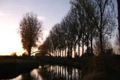 Trees at sunset in the fall at the Scheldemeersen in Spiere, West Flanders, Belgium. Picture of trees at sunset in the fall at the Scheldemeersen in Spiere, West Stock Photos