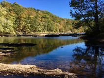 Trees Surround calm creek. In early Autumn Stock Image