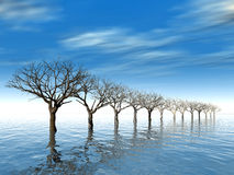 Trees in surroundings water. As a result of flood on a background cloudy sky Stock Photo