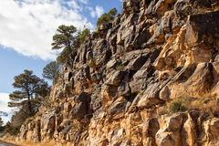 Trees on top of a rock cliff Stock Photography