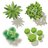 4 trees, top view for map Royalty Free Stock Photography