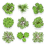 Trees top view vector set for landscape design and map Stock Photos