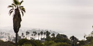 Trees and traffic lights by the sea in San Diego. Scenic view by the sea in San Diego, Caifornia against a vast sky. Lush trees and road with cars and traffic royalty free stock photo