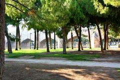 Trees, Turia, Valencia Royalty Free Stock Image