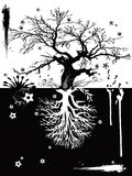 trees två stock illustrationer