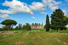 Trees under clear blue skies in an ancient city ruins. Of Paestum Italy Royalty Free Stock Photos