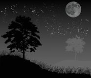 Trees under night sky with moon Stock Photo
