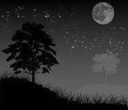 Trees under night sky with moon Stock Photo